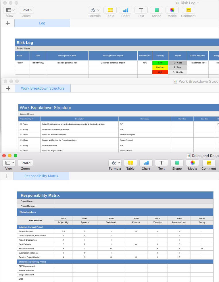Project_Plan_Template_Apple_iWork_Pages_Numbers_Roles_and_Responsibility_Matrix_and_Work_Breakdown_Structure